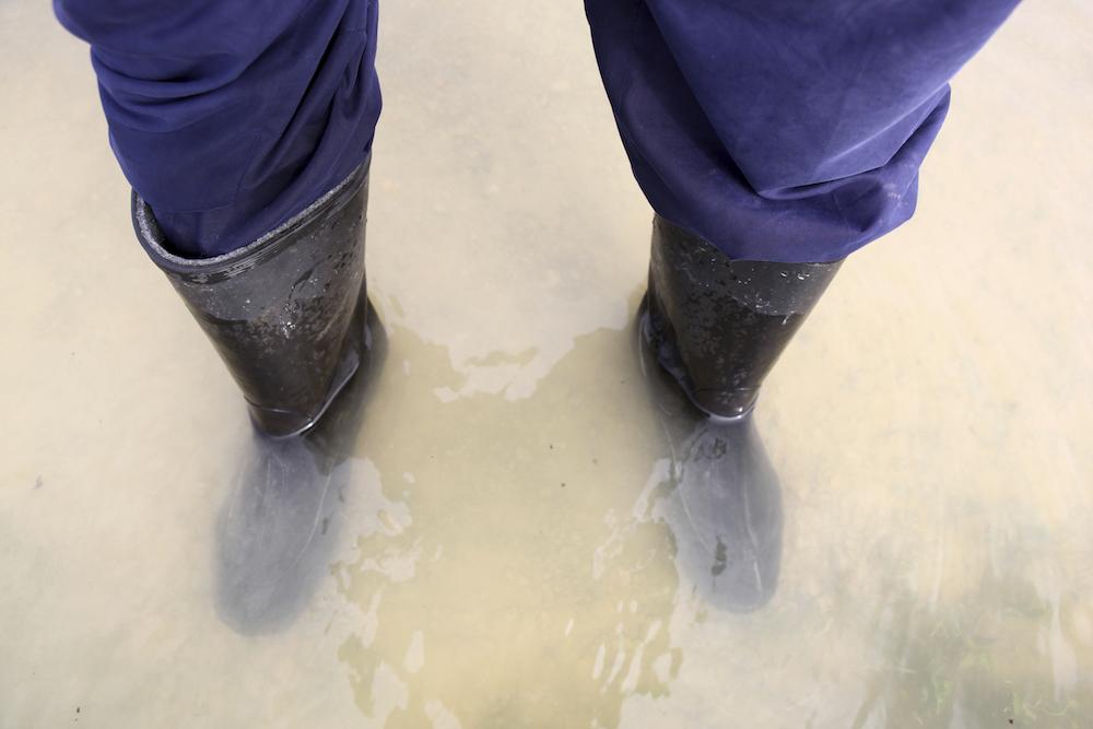 photo Mobilisation pour les sinistrés des inondations des Alpes-Maritimes