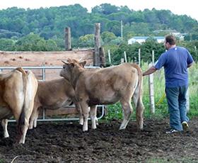 photo Handicap et agriculture, c'est possible
